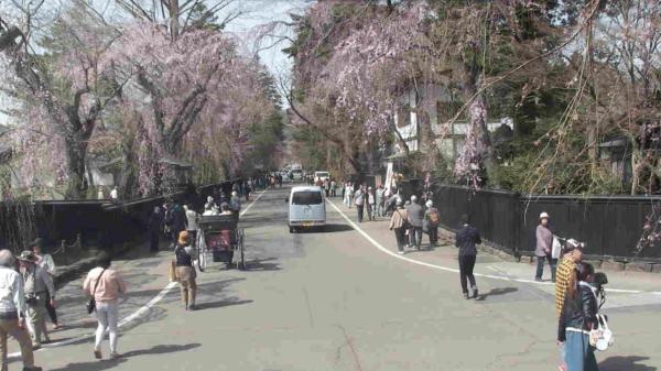 角館武家屋敷通りのライブカメラ|秋田県仙北市