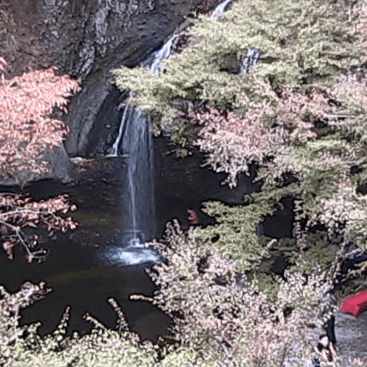 月待の滝のライブカメラ|茨城県久慈郡大子町