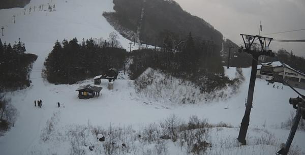 栂池高原スキー場栂の森ゲレンデのライブカメラ|長野県北安曇郡小谷村