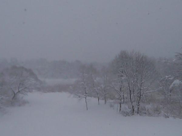 裏磐梯レンゲ沼・磐梯山のライブカメラ|福島県耶麻郡北塩原村
