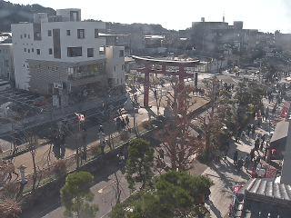 鶴岡八幡宮段葛のライブカメラ|神奈川県鎌倉市