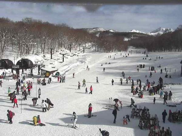たんばらスキーパーク(第1リフト)のライブカメラ|群馬県沼田市