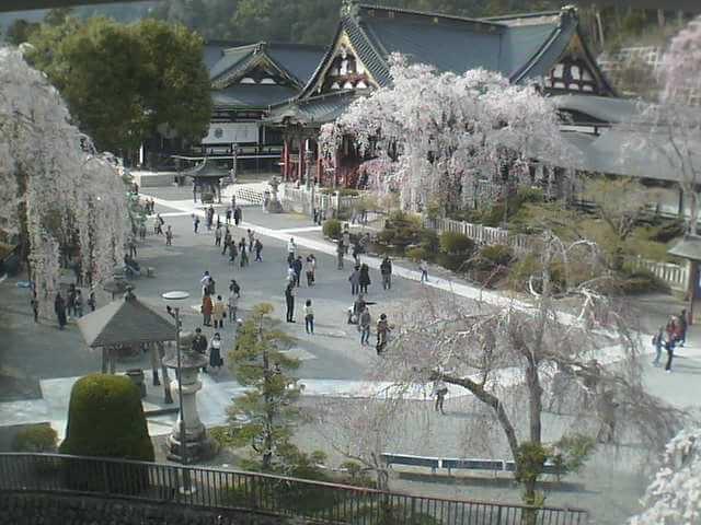 身延山久遠寺のライブカメラ|山梨県身延町