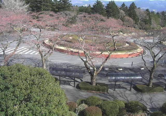 冨士霊園のライブカメラ|静岡県小山町