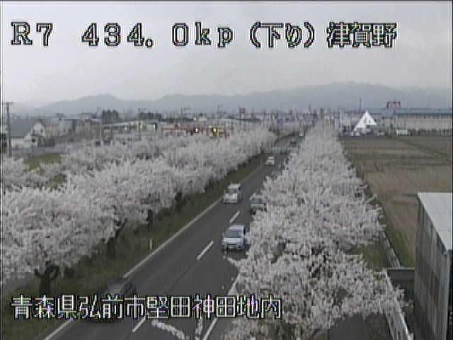国道7号 弘前津賀野のライブカメラ|青森県弘前市