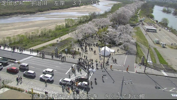さくらであい館のライブカメラ|京都府八幡市