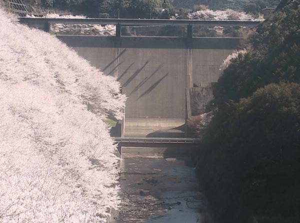 島ノ瀬ダムのライブカメラ|和歌山県みなべ町