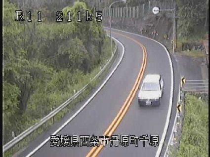 国道11号 桜三里のライブカメラ 愛媛県西条市