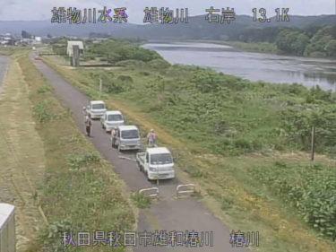 雄物川 椿川のライブカメラ|秋田県秋田市