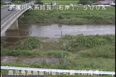 姶良川 姶良橋のライブカメラ|鹿児島県鹿屋市