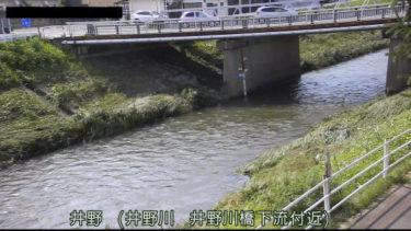 井野川 井野川橋のライブカメラ|群馬県高崎市