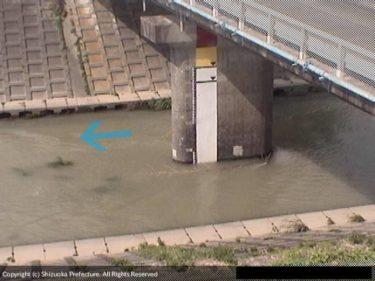 逆川 金城橋のライブカメラ|静岡県掛川市