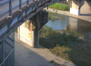 安威川 千歳橋のライブカメラ|大阪府茨木市