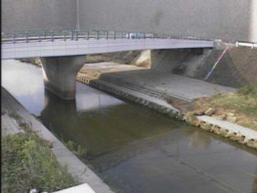 天野川 禁野橋のライブカメラ|大阪府枚方市