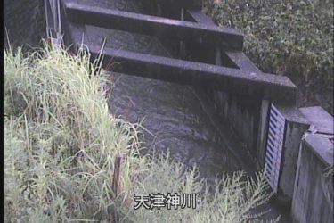 天津神川 のライブカメラ|京都府京田辺市
