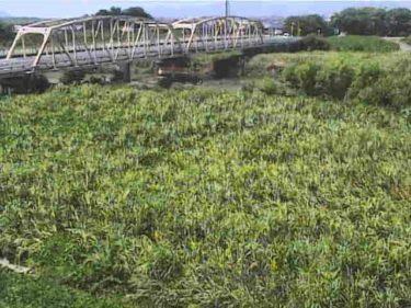 姉川 難波橋のライブカメラ 滋賀県長浜市