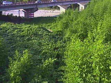 愛知川 八幡橋のライブカメラ|滋賀県東近江市