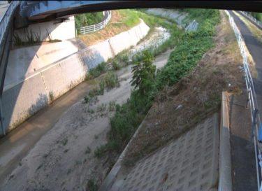 穂谷川 出屋敷歩道橋のライブカメラ|大阪府枚方市