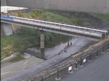穂谷川 山垣内橋のライブカメラ|大阪府枚方市