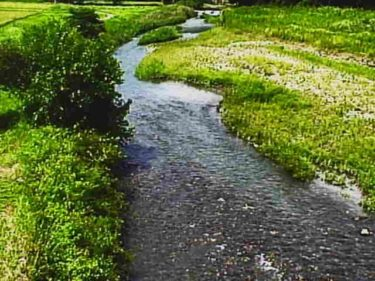 石田川 大床のライブカメラ|滋賀県高島市