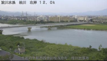 桂川 桂大橋下流のライブカメラ|京都府京都市