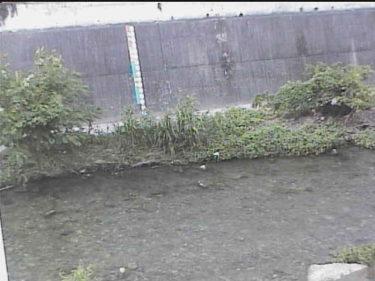 箕面川 箕面川橋のライブカメラ|大阪府池田市
