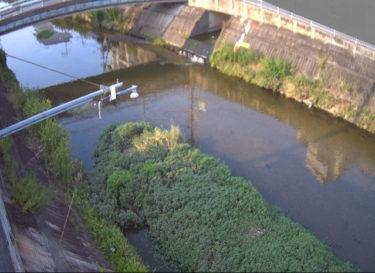恩智川 中高橋のライブカメラ|大阪府八尾市