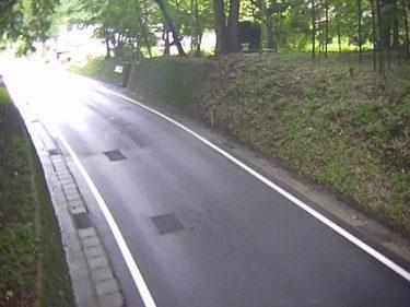 国道294号 白坂1のライブカメラ|福島県白河市