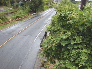 国道431号 神立橋西詰のライブカメラ|島根県出雲市