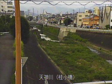 天神川 桂小橋のライブカメラ 京都府京都市