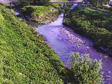 宇曽川 島川のライブカメラ 滋賀県愛荘町