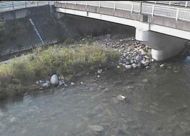 余野川 高橋のライブカメラ|大阪府池田市