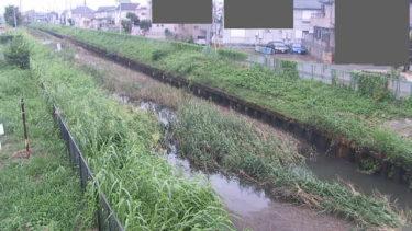 鴨川 ずずむき橋のライブカメラ|埼玉県上尾市