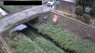 鴻沼川 十五条橋観測所のライブカメラ|埼玉県さいたま市