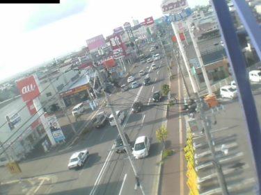 国道103号 観光通りのライブカメラ|青森県青森市