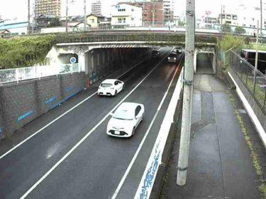 国道248号 平岩トンネル 南のライブカメラ|岐阜県恵那市