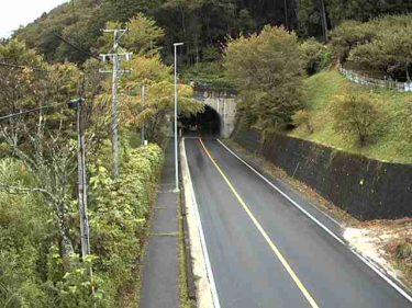 国道257号 金山 北のライブカメラ|岐阜県下呂市
