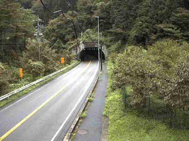 国道257号 飛出山トンネル 南のライブカメラ|岐阜県中津川市