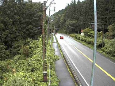 国道257号 塞の神トンネル 北のライブカメラ|岐阜県中津川市