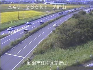 国道49号 新潟市江南区茅野山のライブカメラ|新潟県新潟市