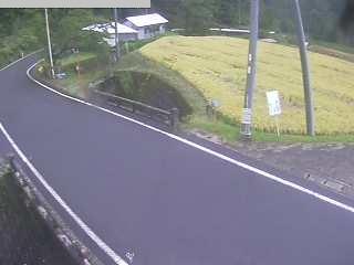 鳥取県道37号 八頭町稗谷のライブカメラ|鳥取県八頭町