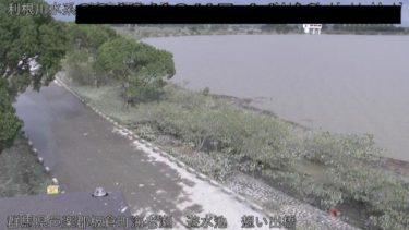 渡良瀬川 渡良瀬遊水地・想い出橋のライブカメラ|群馬県板倉町