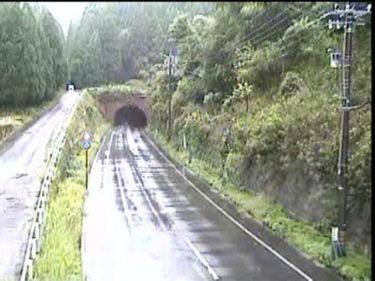 国道365号 上山中のライブカメラ|福井県越前町
