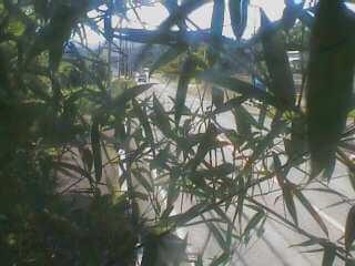 滋賀県道558号 木戸のライブカメラ 滋賀県大津市