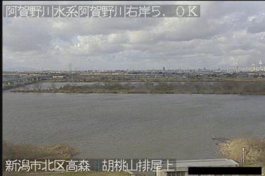 阿賀野川 胡桃山排屋上のライブカメラ|新潟県新潟市