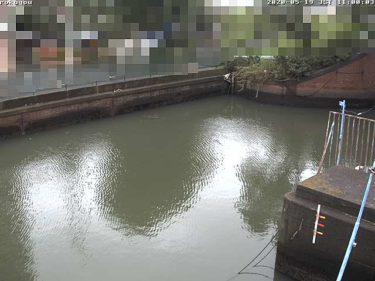 多摩川 六郷水門のライブカメラ|東京都大田区