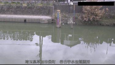 綾瀬川 草加市栄町のライブカメラ|埼玉県草加市