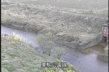 芋埣川 栗駒公園線のライブカメラ|宮城県栗原市