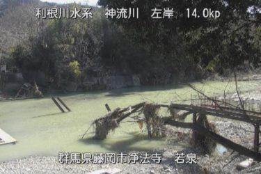神流川 若泉(神流川)のライブカメラ|群馬県藤岡市