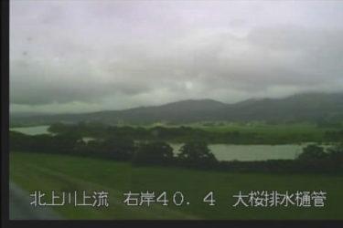 北上川 大桜のライブカメラ|岩手県奥州市